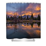 Snake River Glory Shower Curtain