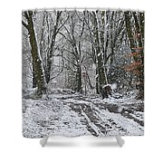 Snow In The Woods Shower Curtain