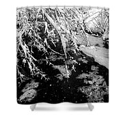 Snow Pa 10-013 Shower Curtain