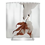 Snowy Leaf Shower Curtain by Mary Jo Allen