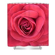 Soft Rose Shower Curtain