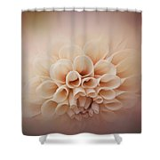Soft, Subtle Dahlia Shower Curtain