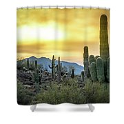 Sonoran Sunrise Shower Curtain