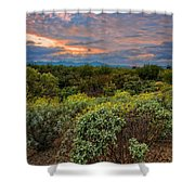 Sonoran Valley Sunset V1922 Shower Curtain by Mark Myhaver