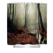 Sounds Of Silence Shower Curtain
