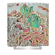 Spaghetti And Shrimp Shower Curtain