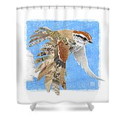 Sparrow Shower Curtain by Clint Hansen