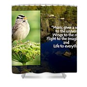 Sparrows Music Shower Curtain