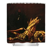 Spring Harvest Also Known As Still Life With Asparagus 1887 Shower Curtain
