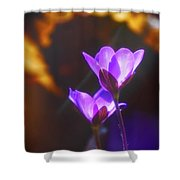 Spring Wild Flower 2 Shower Curtain