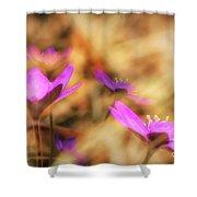 Spring Wild Flower 4 Shower Curtain