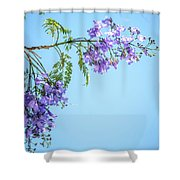 Springtime Beauty Shower Curtain