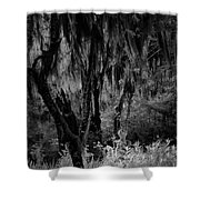 Statue In The Grass Shower Curtain