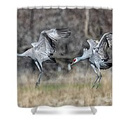 Stay With Your Wingman Shower Curtain