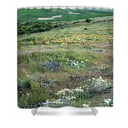 Steptoe Butte View 9276 Shower Curtain