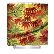 Still Blushing Shower Curtain
