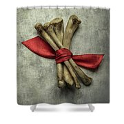 Still Life With Bones And Red Ribbon Shower Curtain