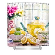 Still Life With Lemons Shower Curtain