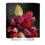 Still Life With Tulips 35 Shower Curtain