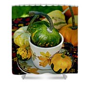 Still Live With Autumn Coffee Cup And Gourds Shower Curtain