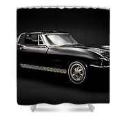 Stingray Style Shower Curtain