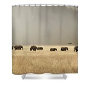 Stormy Skies Over The Masai Mara With Elephants And Zebras Shower Curtain