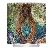 Strange Tree Shower Curtain by Kate Brown
