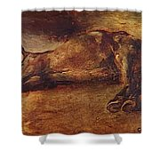 Study For Dead Horse Shower Curtain