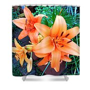 Summer Blast Of Color Shower Curtain