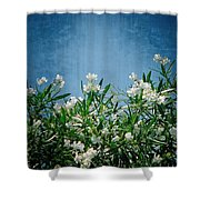 Summer Wildflowers Shower Curtain by Carolyn Marshall