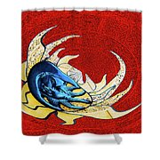 Sun And Moon On Red 2 Shower Curtain