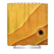 Sun Spot Shower Curtain