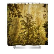 Sunbeams In The Foggy Forest #3 Shower Curtain