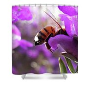 Sunburned Bee Butt Shower Curtain