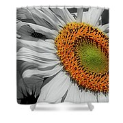 Sunflower And Shy Friend Shower Curtain