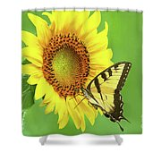 Sunflower And Swallowtail Shower Curtain