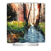 Sunlight Colorful Path Shower Curtain