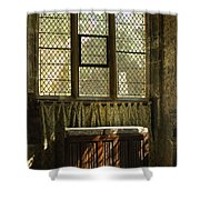 sunlight on linen fold altar in Trinity church York Shower Curtain