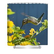 Sunny Delights Shower Curtain
