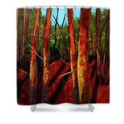 Sunny Forest Landscape Shower Curtain