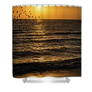 Sunrise Birds Nc Shower Curtain