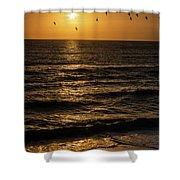 Sunrise Birds North Carolina Shower Curtain