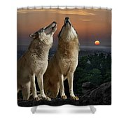 Sunset Harmony Shower Curtain