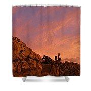 Sunset, Joshua Tree National Park Shower Curtain