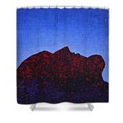 Surfacing Original Painting Shower Curtain
