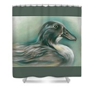 Swedish Blue Duck Shower Curtain by MM Anderson