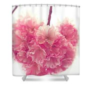 Sweet Heart Of Spring Shower Curtain