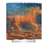 Swirly Horse 1 Shower Curtain