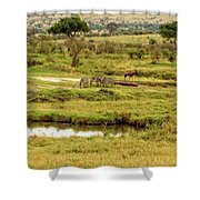 Tanzania Animal Landscape Shower Curtain