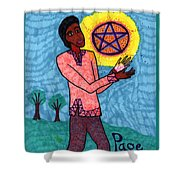 Tarot Of The Younger Self Page Of Pentacles Shower Curtain